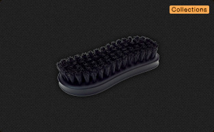 Collections Bristle Shoe Brush